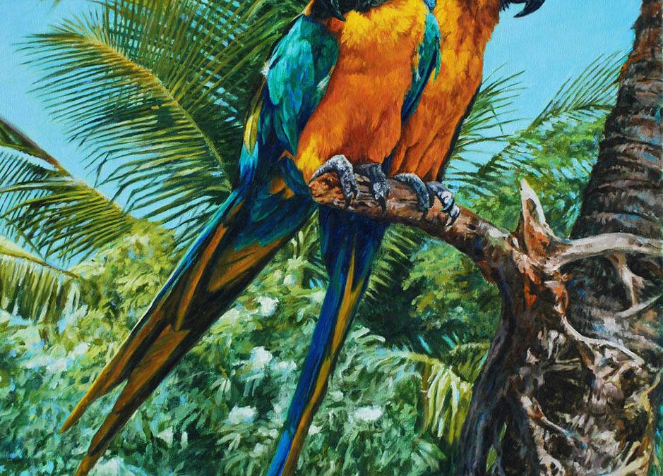 Tropical Blue & Gold